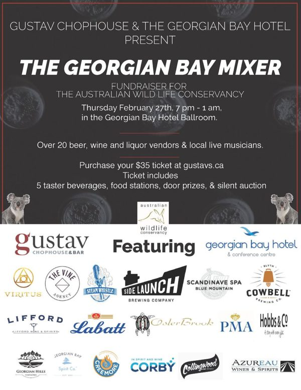 The Georgian Bay Mixer - at Gustavs - Thursday February 27th, 2020